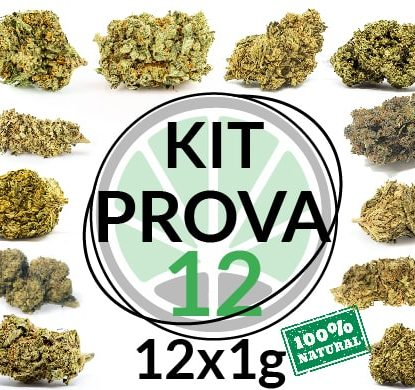 marijuana-kit-12 grammi cannabis light