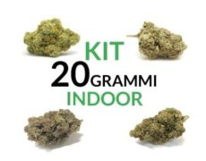 Kit 20 Indoor