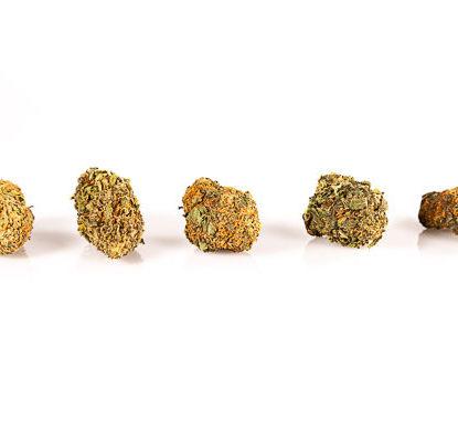 Cime di marijuana legale Orange Bud