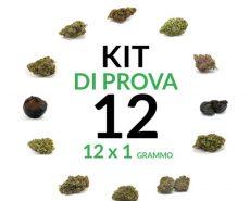 marijuana-kit-12