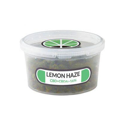lemon-haze-weed