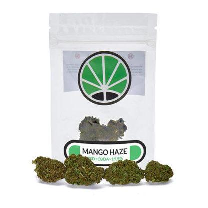 mango-cannabis