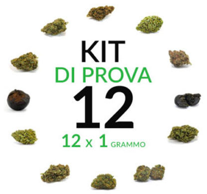 marijuana-kit-12-grammi-cannabis-light
