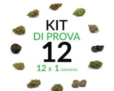 marijuana-kit-12-grammi-cannabis-light-italia-justbob