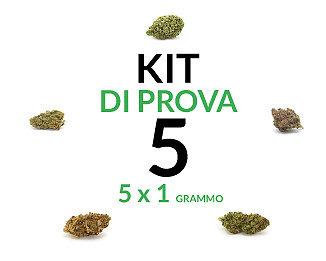 marijuana-kit-5