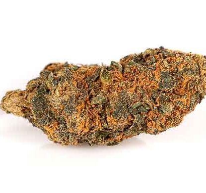 orange bud cannabis legale