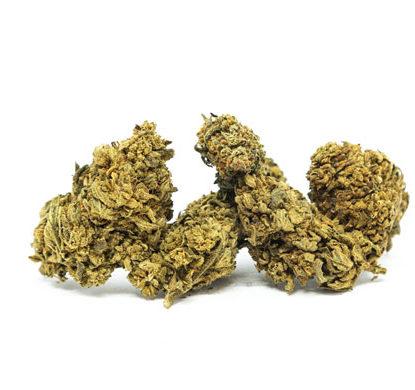 Cime di White Widow Marijuana legale