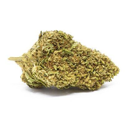 Bubblegum Cannabis Light Italia