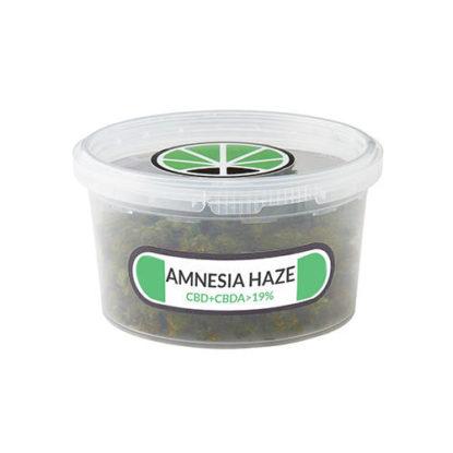 amnesia-haze-erba