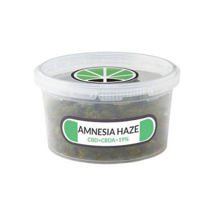 amnesia-haze-cannabis
