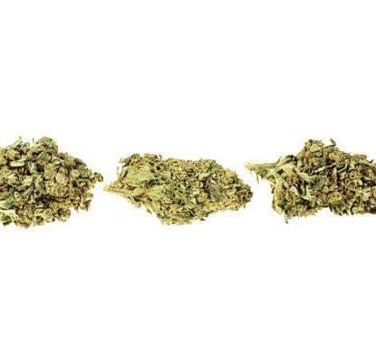 cime di cannabis legale bubblegum