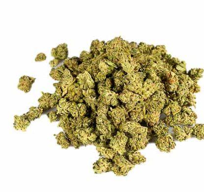 cime di California haze marijuana legale