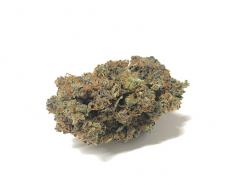 california-haze-marijuana-legale-cannabis-italia