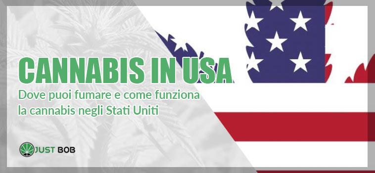 La Marijuana negli stati uniti d'america