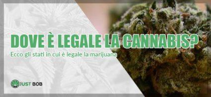 dove e legale la cannabis
