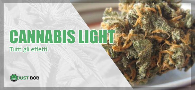 tutti gli effetti della cannabis light