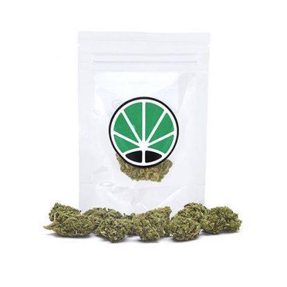 royal-cookies-weed-cannabis-legale-marijuana-italia