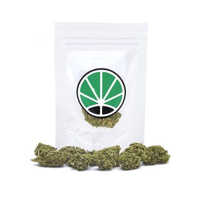 royal-cookies-weed-cannabis-legale-marijuana-italia