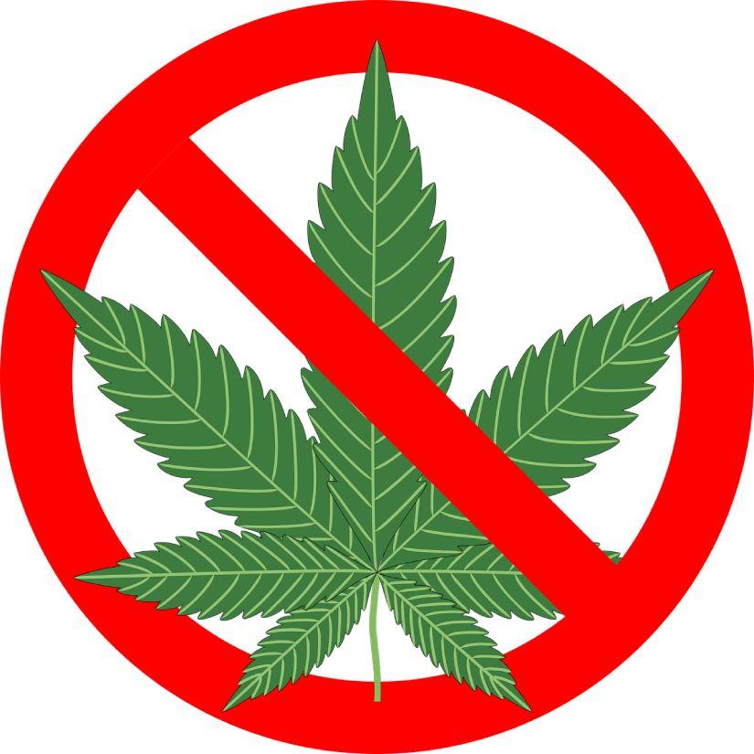 dove è legale la cannabis nel mondo
