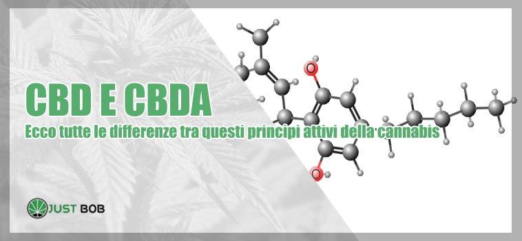 cbd cbda