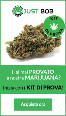 ecommerce marijuana light legale in italia