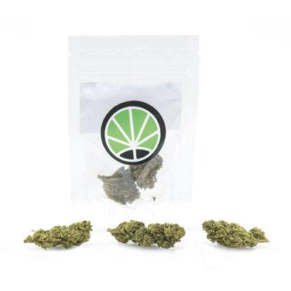 melon-kush-weed-cannabis-light-italia-justbob