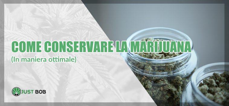conservare marijuana