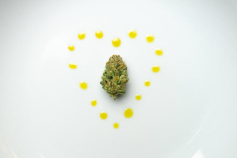 olio cbd cannabis light
