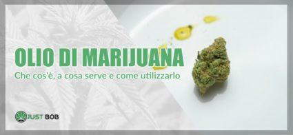 olio di marijuana