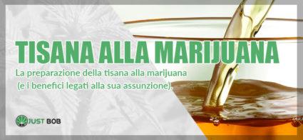 tisana alla marijuana preparazione e benefici