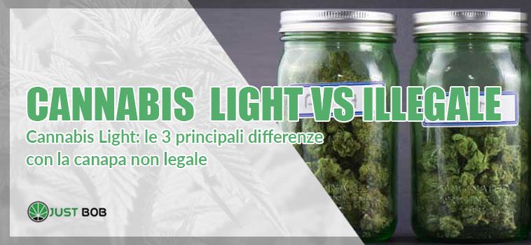 canapa legale vs cannabis illegale