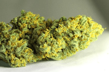 lemon haze marijuana light