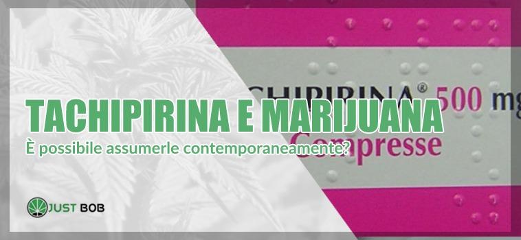 tachipirina e marijuana