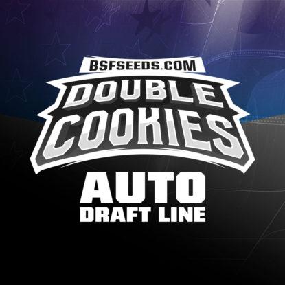 double-cookies-auto-logo