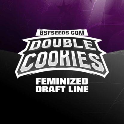 double-cookies-fem-logo