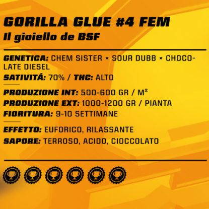gorilla-glue-femminized-proprietà-informazioni-cannabis