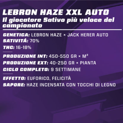 lebron-haze-auto-info-proprietà