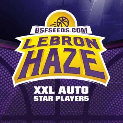 lebron-haze-auto-logo