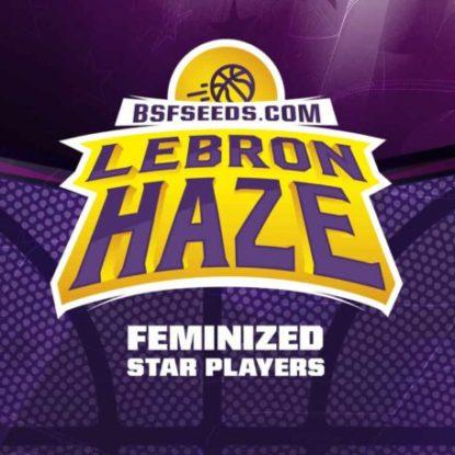 lebron-haze-fem-logo