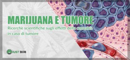 marijuana e tumore