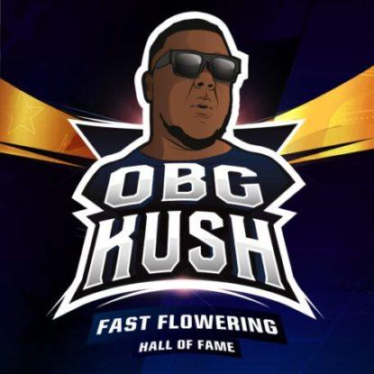 ogb-kush-logo