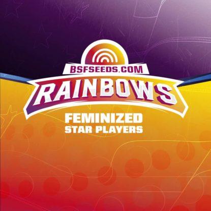 rainbows-fem-logo