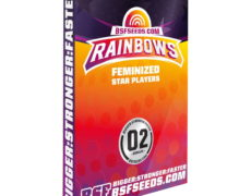 rainbows-semi-marijuana-thc-seeds
