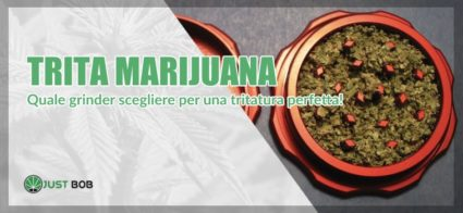 trita marijuana