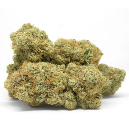 gorilla-glue-cannabis-legale-erba-italia
