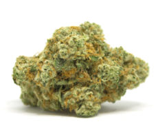 gorilla-glue-weed-cannabis-light-marijuana