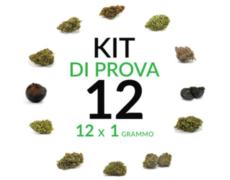 marijuana kit 12 grammi cannabis legale marijuana italia