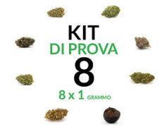 marijuana-kit-8
