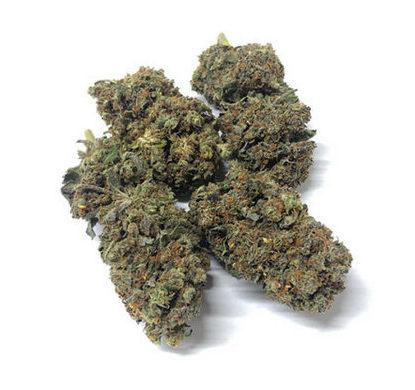 California-Haze-cannabis-italia-marijuana-legale-weed-shop