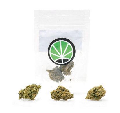 bubblegum-cannabis-light-italia-marijuana-shop